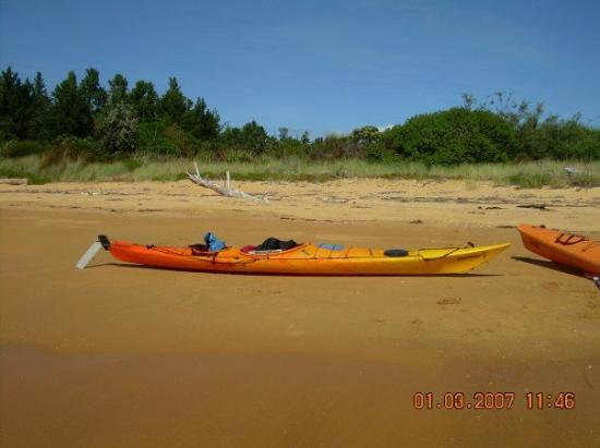 Kaiteriteri Beach ภาพถ่าย