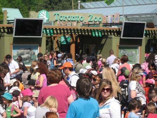โตรอนโต, แคนาดา: YYZ Zoo
