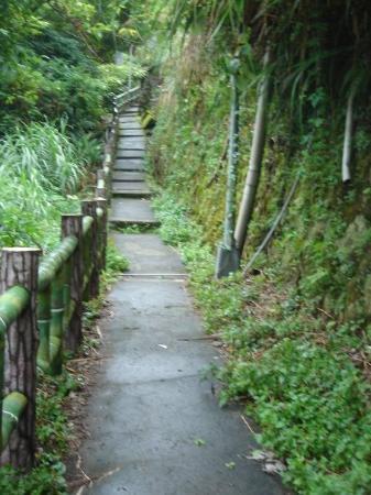 ไทเป, ไต้หวัน: Path to Yang Ming National Park