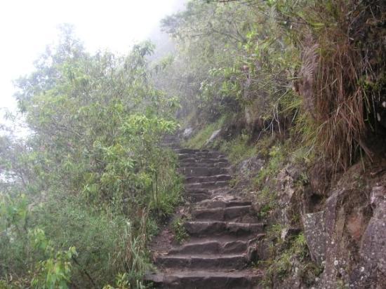 มาชูปิกชู, เปรู: those killer steps that never seem to end!