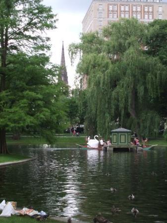บอสตัน, แมสซาชูเซตส์: Gorgeous!