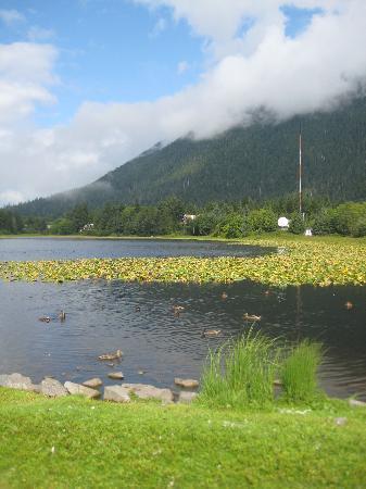 ซิตกา, อลาสกา: Swan lake