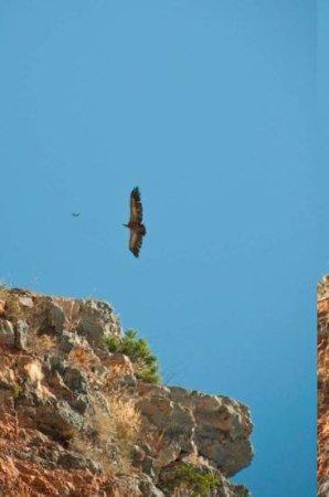 Nuevalos, สเปน: Sobrevolando