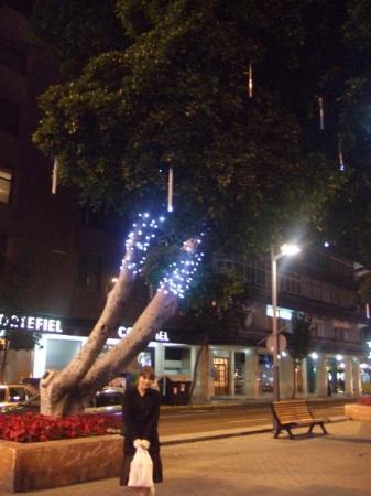 ลัสปัลมัส เดอ กรัง คานาเรีย, สเปน: nyårsbelysning
