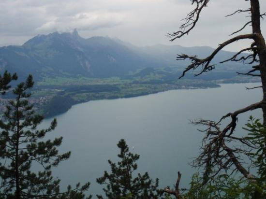 ทัน, สวิตเซอร์แลนด์: Blick auf den Thunersee während der dreistündigen Wanderung ( Beatenberg- Niederhorn)