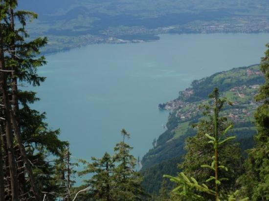 ทัน, สวิตเซอร์แลนด์: Blick auf den Thunersee während der dreistündigen Wanderung ( Beatenberg- Niederhorn), Einnahme
