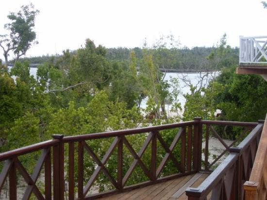 Paradisus Rio de Oro Resort & Spa: The spa at the resort