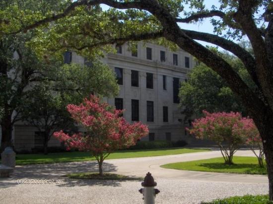 คอลเลจสเตชัน, เท็กซัส: Texas A&M University