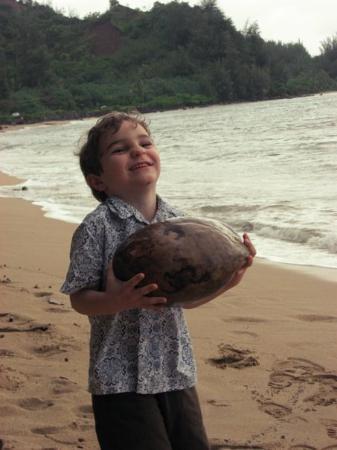 Hanalei Bay: Coconut???
