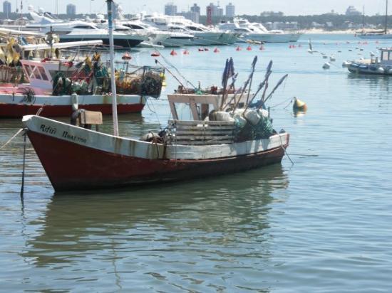 ปุนตาเดลเอสเต, อุรุกวัย: A fishing boat in the port in Punta del Este.