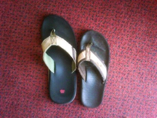 ลอกห์ลิน, เนวาด้า: My Flip Flop next toRudy GaGa's Flip Flop...