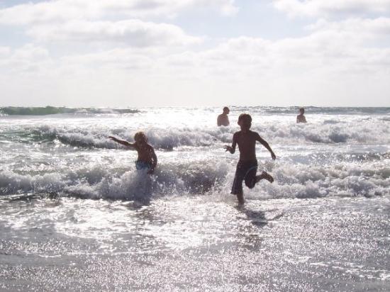 ซานดีเอโก, แคลิฟอร์เนีย: Ocean