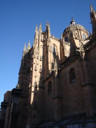 Old Cathedral (Catedral Vieja): Salamanca