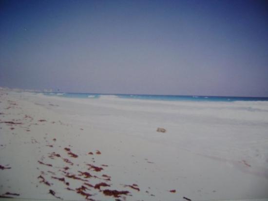 พลายาเดลคาร์เมน, เม็กซิโก: Cancun