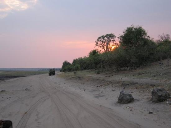 Chobe National Park, บอตสวานา: Cobe River en tidlig morgon vid halv 6 tiden ...vi letar efter lejon