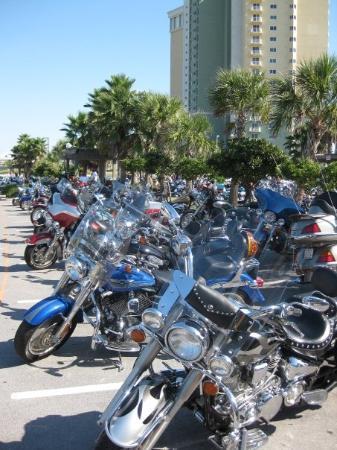 ปานามาซิตี้บีช, ฟลอริด้า: just bikes at Thunder on the Beach