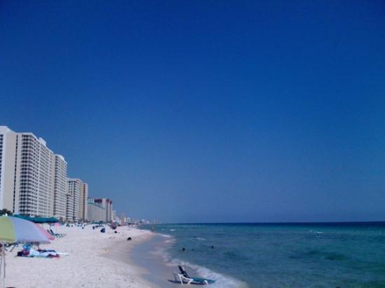 ปานามาซิตี้บีช, ฟลอริด้า: Panama City Beach