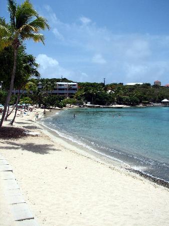 Secret Harbour Beach Resort: The Ocean front rooms, shot from the restaurant