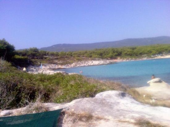 Sarti, กรีซ: kavourutripes
