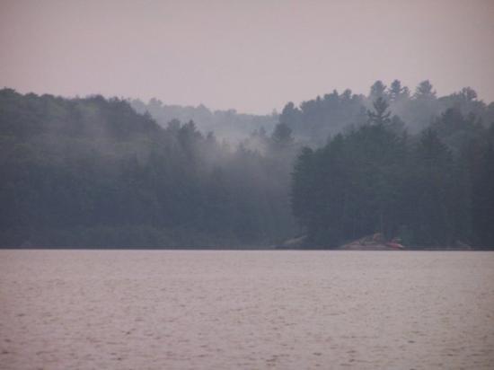 แอลกอนควินพาร์ค, แคนาดา: Misty evening