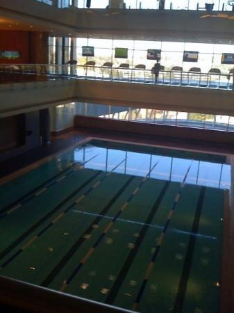 โจฮันเนสเบิร์ก, แอฟริกาใต้: Pool Hotel