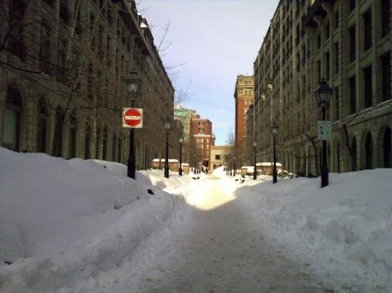 มอนทรีออล, แคนาดา: Where i fell over.........