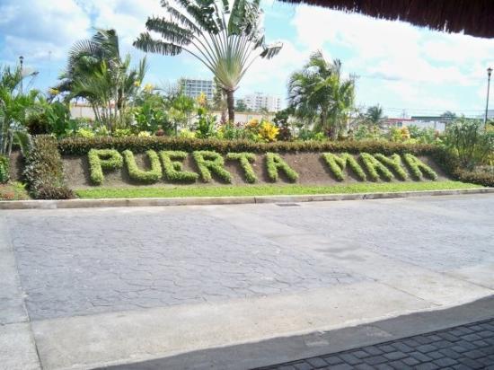 Cozumel (เกาะโกซูเมล), เม็กซิโก: Bushes in Puerta Maya, Cozumel