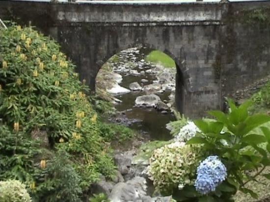 São Miguel ภาพถ่าย