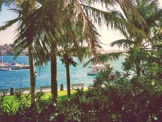 เบอร์มิวดา: Paradise