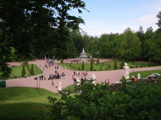 พระราชวังและสวนปีเตอร์ฮอฟ: Peterhof is set in a really huge garden... big, big garden. We walked for hours and didn't see i