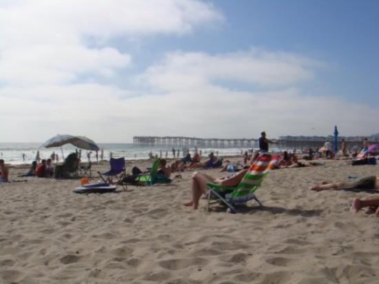 ซานดีเอโก, แคลิฟอร์เนีย: PacificBeach