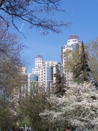 Arcadia district Image