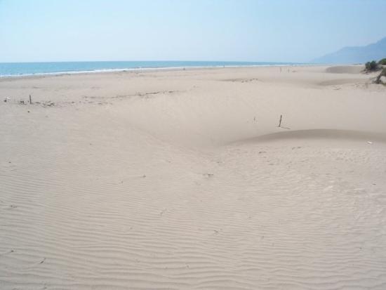 Patara, ตุรกี: kum yaniyor