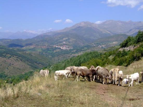 Benasque ภาพถ่าย