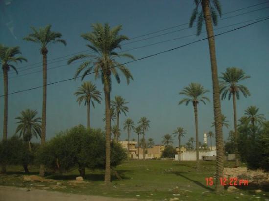Misratah, Libia: رحلة مصراطة 210 km