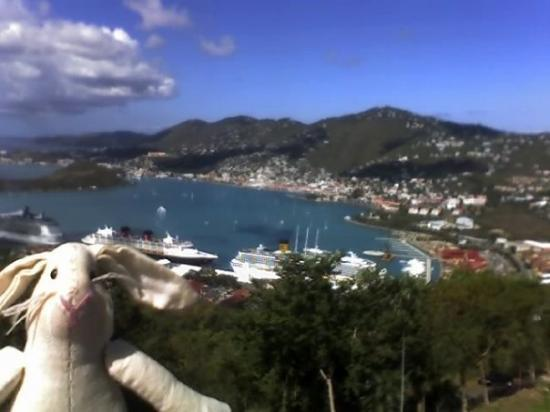 เซนต์ โทมัส: St. Thomas, Virgin Islands