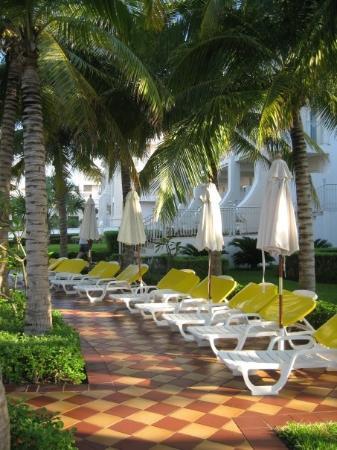 พลายาเดลคาร์เมน, เม็กซิโก: Pool area...everything was kept immaculate!! Riu Palace Riviera Maya, Playa del Carmen, Mexico (