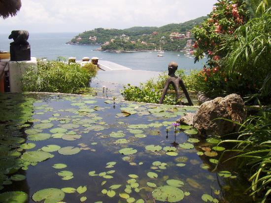 Tentaciones Hotel: Beautiful Pool and Garden