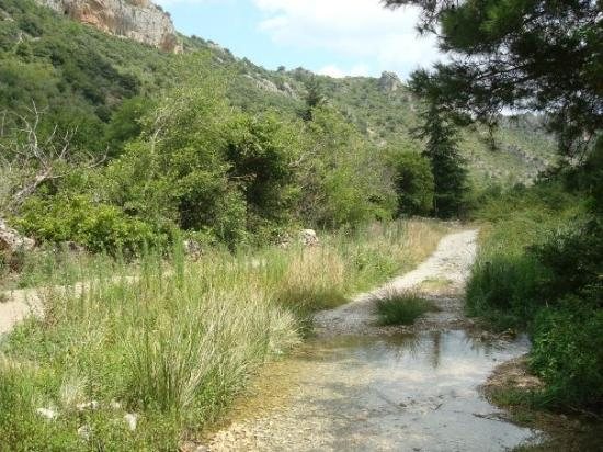 Saint-Guilhem-le-Desert Photo