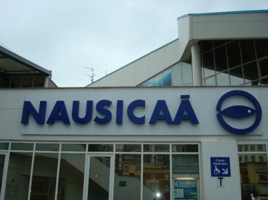 Petit d tour par boulogne sur mer pour visiter l 39 aquarium for Boulogne sur mer piscine