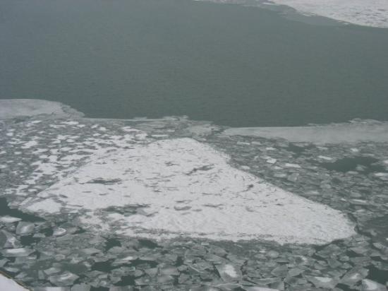 โตรอนโต, แคนาดา: Ice in the toronto Harbor