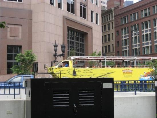Boston Duck Tours: Duck tours... these buses drive on land and in the water, cool huh?