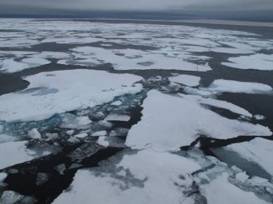 Spitsbergen, นอร์เวย์: High up North - direction 81 degrees