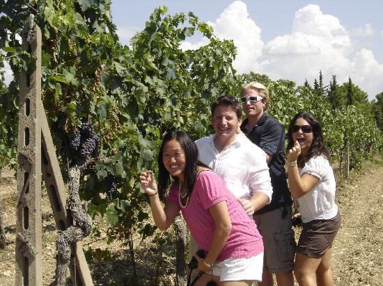 Wine Tours with Italy and Wine: tasting the grapes!