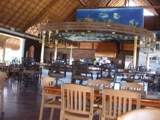 The Money Bar Beach Club: The Money Bar at Dzul Ha - 8/12/09