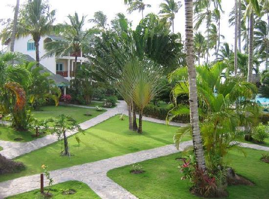 Hotel Residence Playa Colibri: Courtyard
