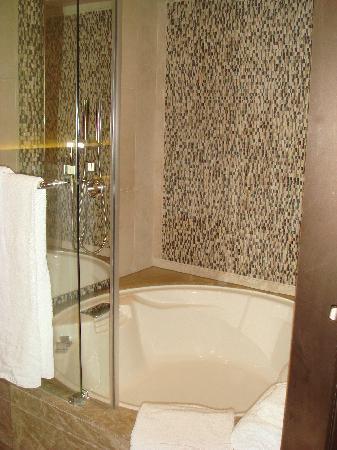 โรงแรมฮาร์เบอร์ แกรนด์ ฮ่องกง: bath shower