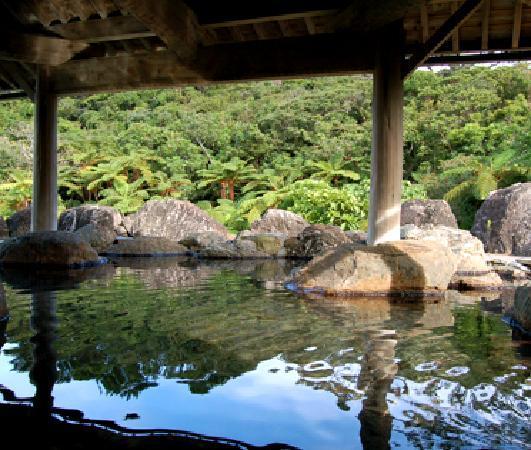 Jungle Hotel Painu Maya: 日本最南端の温泉、西表島温泉です。