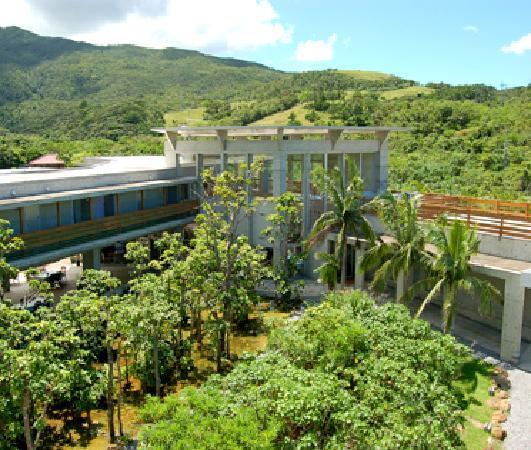 Jungle Hotel Painu Maya: 森の中にあるパイヌマヤリゾート