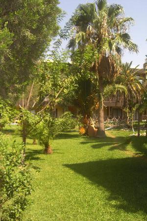 Hotel Paradis Palace: les jardins
